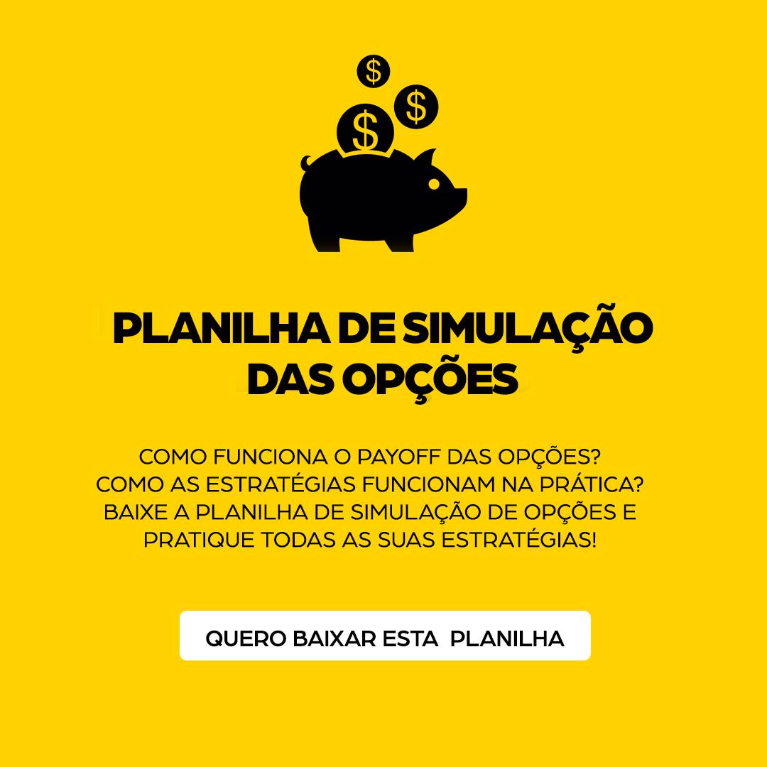 Planilha-de-simulacao-das-opcoes_lateral1.png